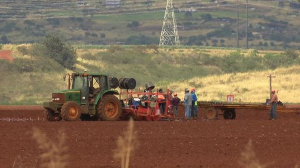 Hawaii became the first state to ban the use of pesticides containing the chemical...