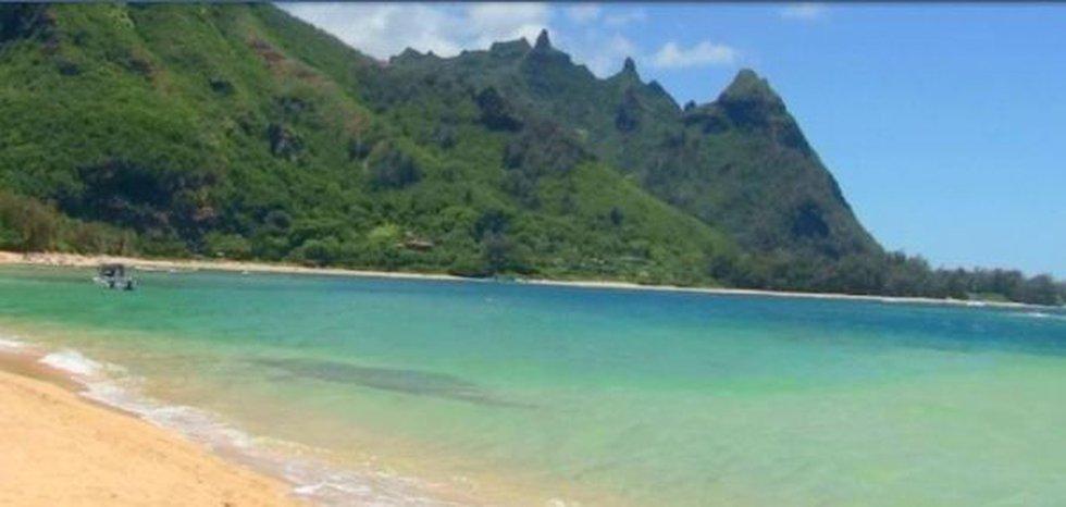 Giant corals rapidly dissolving off Kauai