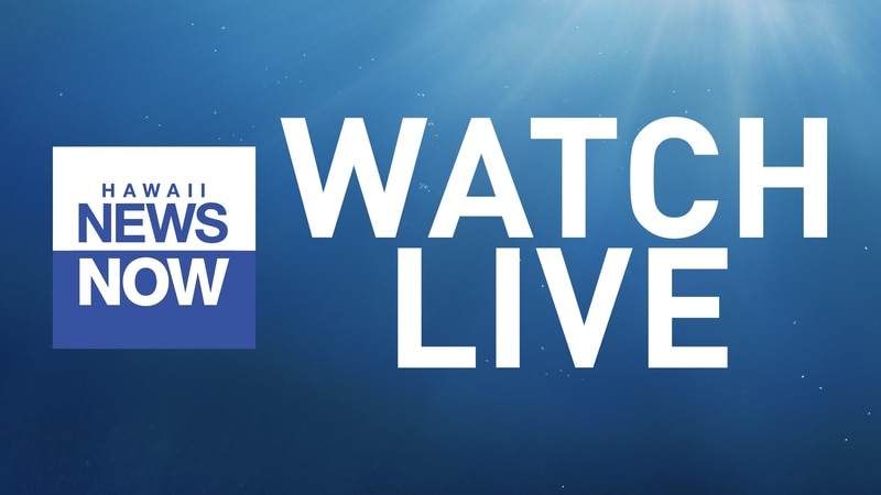 Graphic for HNN livestream newscasts