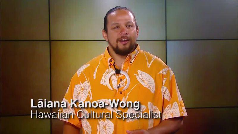 Hawaiian Word of the Day: Loea