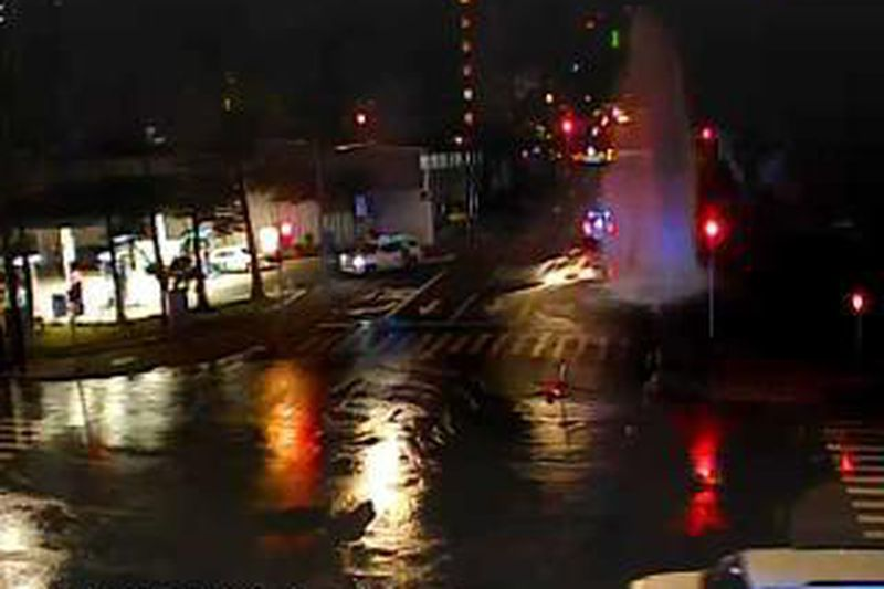 A vehicle crashed into a fire hydrant on Ward Avenue early Monday, shooting water into the air...