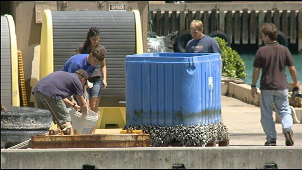 Researchers pulled a mysterious blue box out of the ocean near Sea Life Park