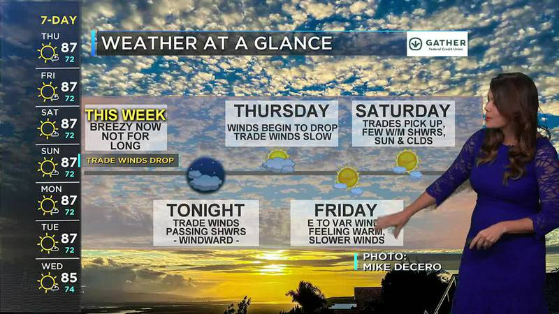 Tracking trade winds tonight but fading the next two days
