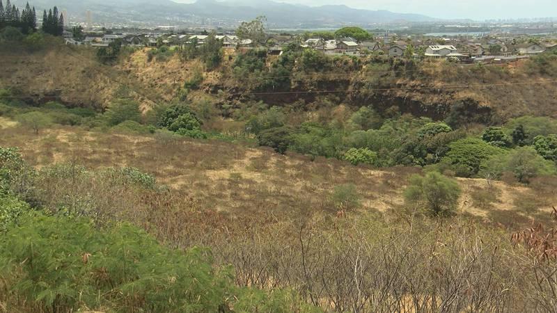 Savio hopes to build the solar farm on his property in Waikele.
